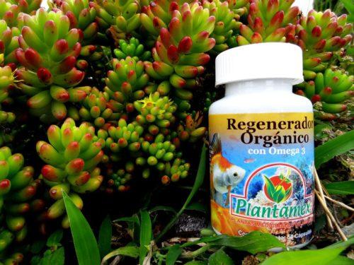 Regenerador Organico
