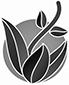 Plantamex Icon